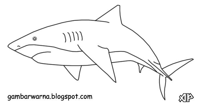11 sketsa gambar mewarnai ikan