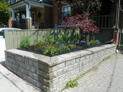 Toronto new garden installation Roncesvalles Village after by Paul Jung Gardening Services