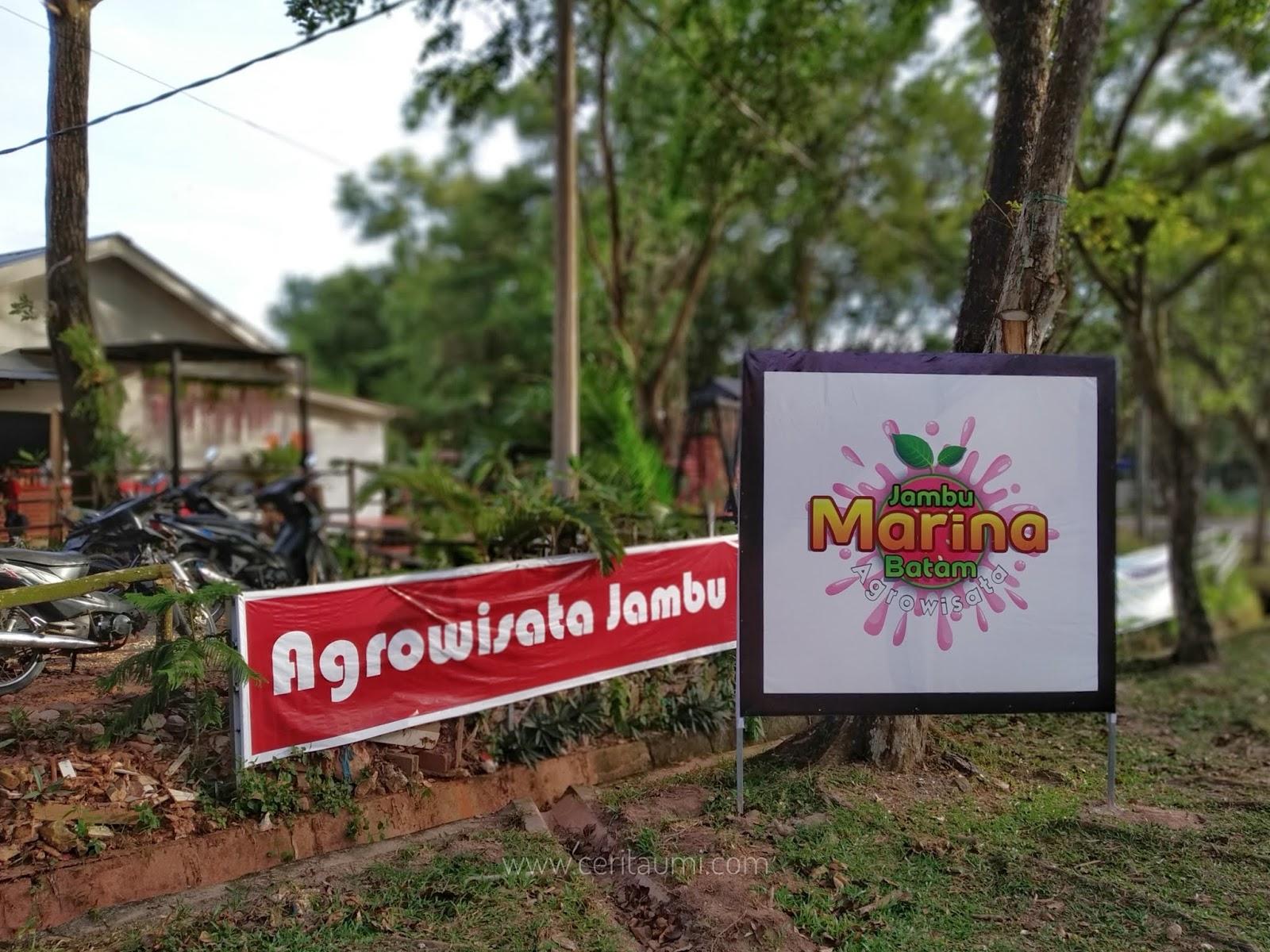 Agrowisata Jambu Marina Batam Lokasi Baru Banyak Wahana