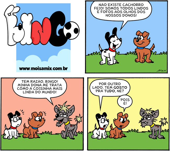 Não existe cachorro feio