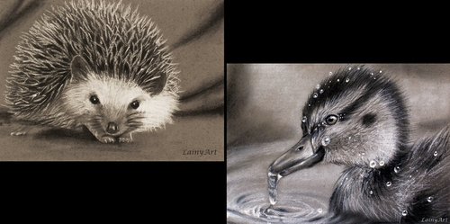 00-Alaina-Ferguson-Lainy-Animal-Charcoal-Portrait-Drawings-www-designstack-co