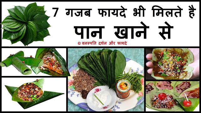 7 Gajab Fayde Bhi Milte Hai Paan Khane Se