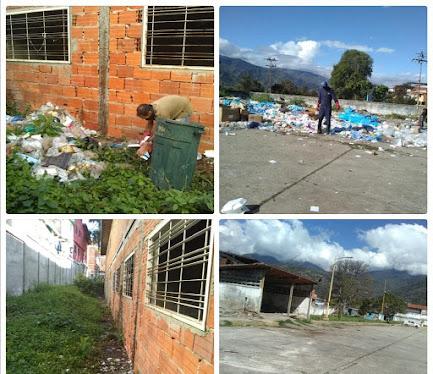 Recolección de desechos biológicos y orgánicos se realiza en el Iahula y Sor Juana Inés