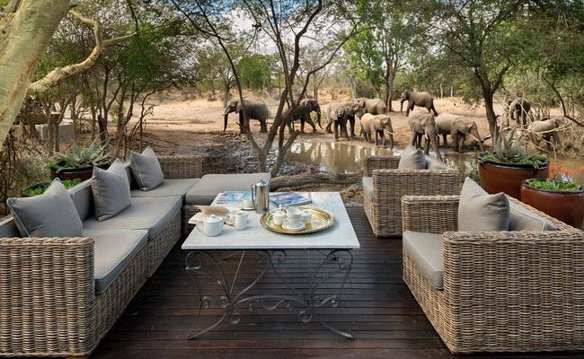 Xvlor Kruger National Park is the most popular reserve in South Africa