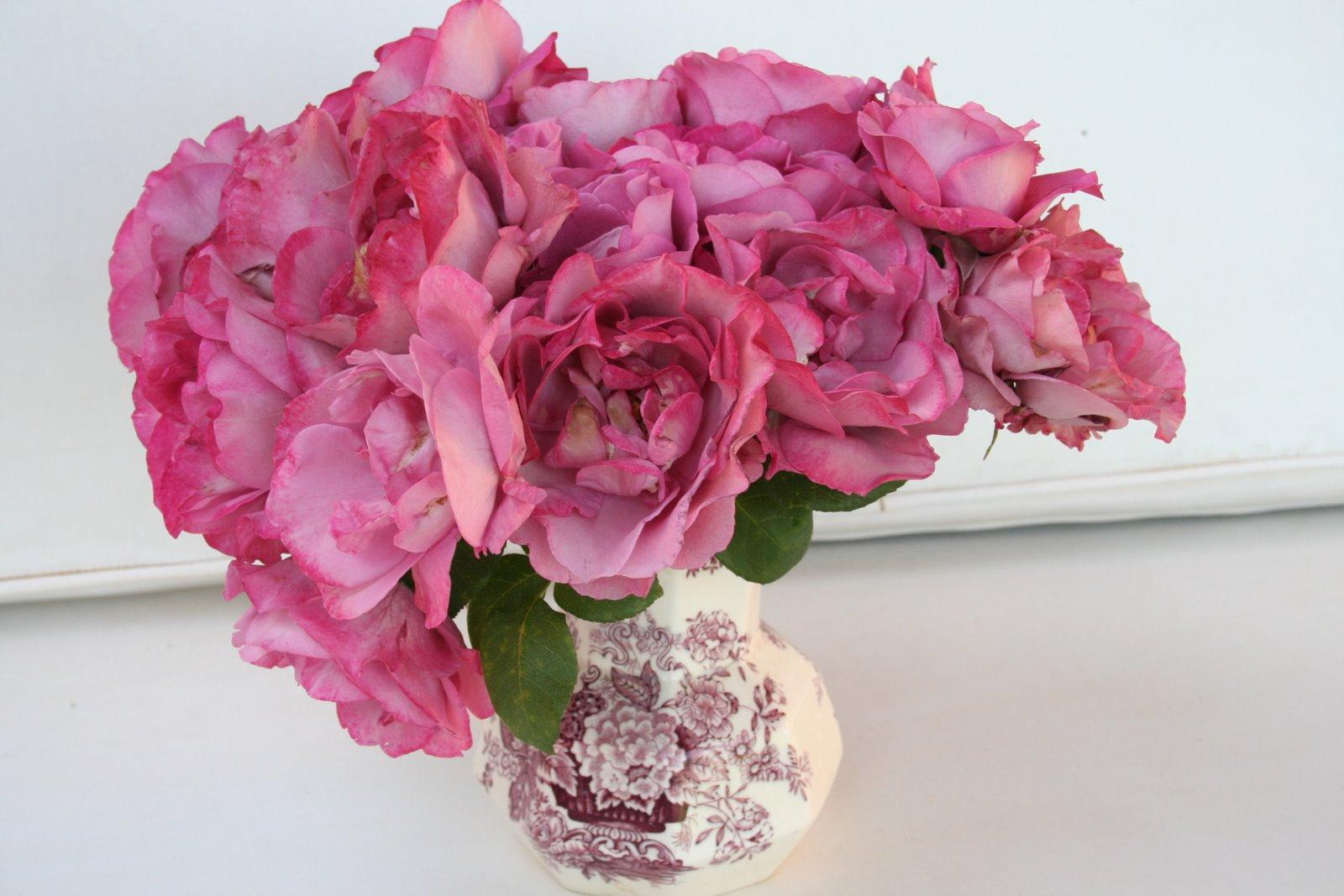 The good life in morocco heavenly scent zamzam roses thursday december 8 2011 izmirmasajfo
