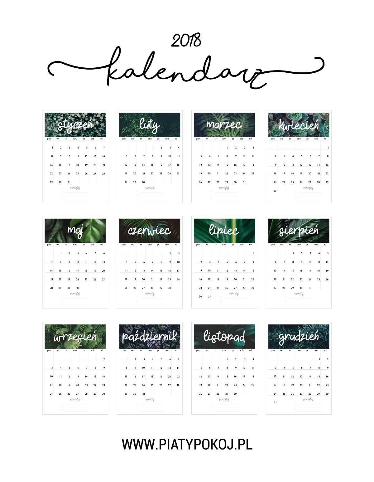 kalendarz do pobrania | monstera | rośliny