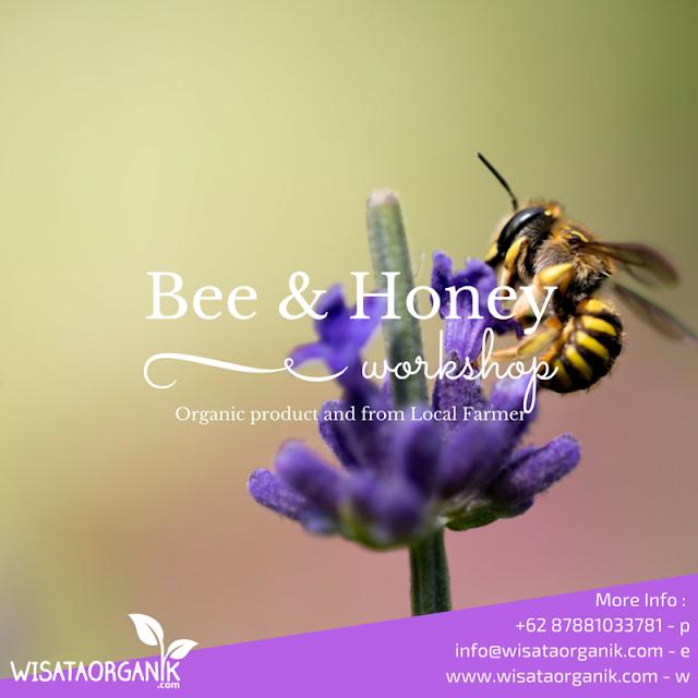 Bee Workshop