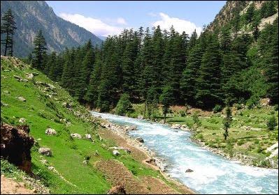 Swat Mankyal Valley Pakistan | Natural Beauty of Kalam