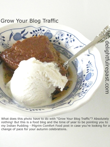 Grow Your Blog Traffic - Why I Don't Worry About It (Much) / www.delightfulrepast.com