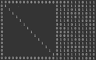 [Image: A big matrix of ones and zeros.]
