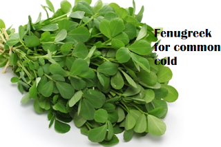 Using fenugreek for common cold