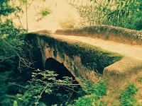 http://contarenbreve.blogspot.com/2016/11/puentes.html