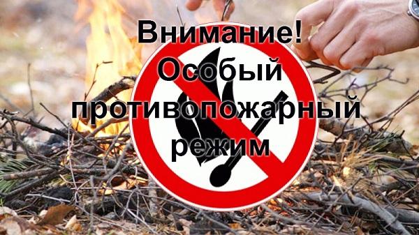 с С 25 апреля 2019 года установлен особый противопожарный режим