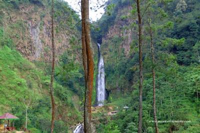 Mengulik Petungkriyono, Hutan Belantara yang Segera Mendunia