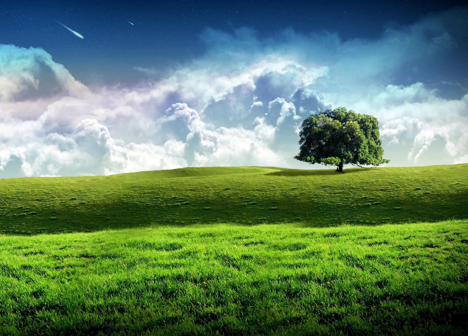 Prabhas Wallpapers Free Download Mobile: Windows Nature Pc Walls New Xp Wallpapers Windows7windows8