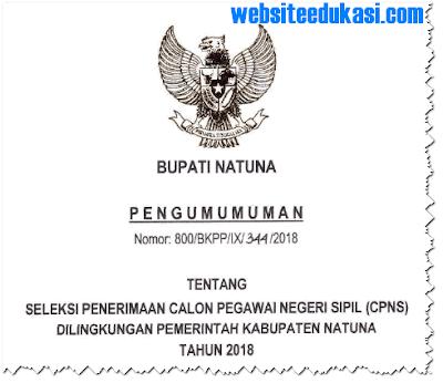 Pengumuman Pendaftaran CPNS 2018 Kabupaten Natuna
