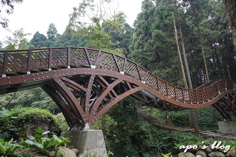 溪頭銀杏橋