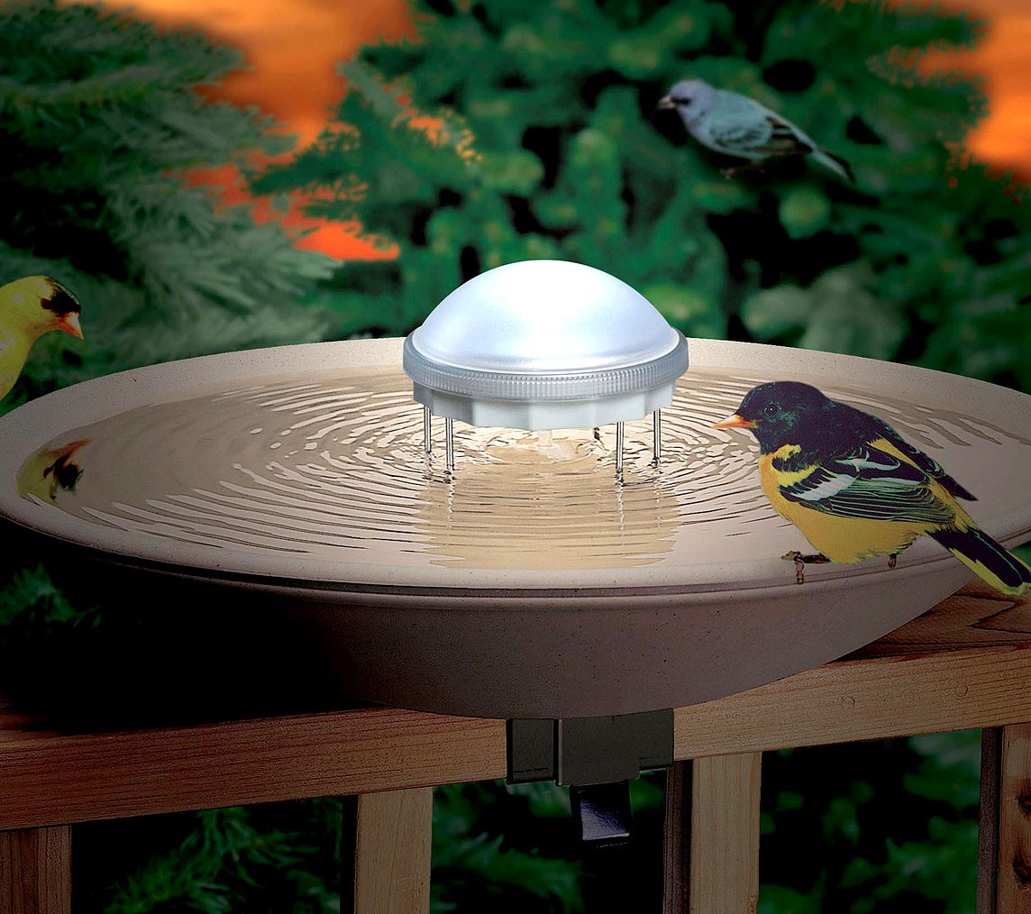 Tip The Easiest Way To Clean Bird Feeders And Birdbaths Is Them Regularly Then Up Will Be Minimal