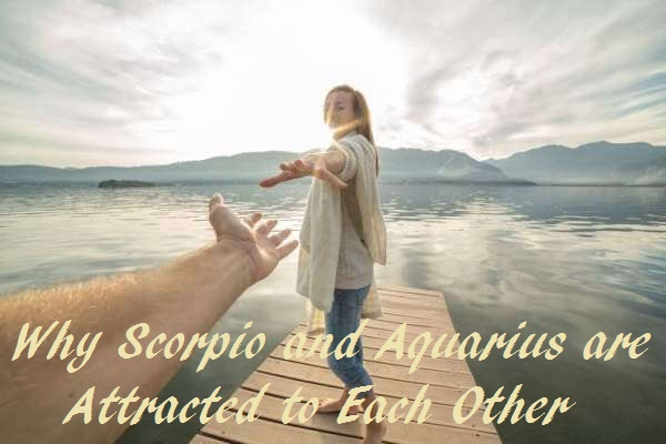 Scorpio and Scorpio - Compatibility in Sex Love and Life