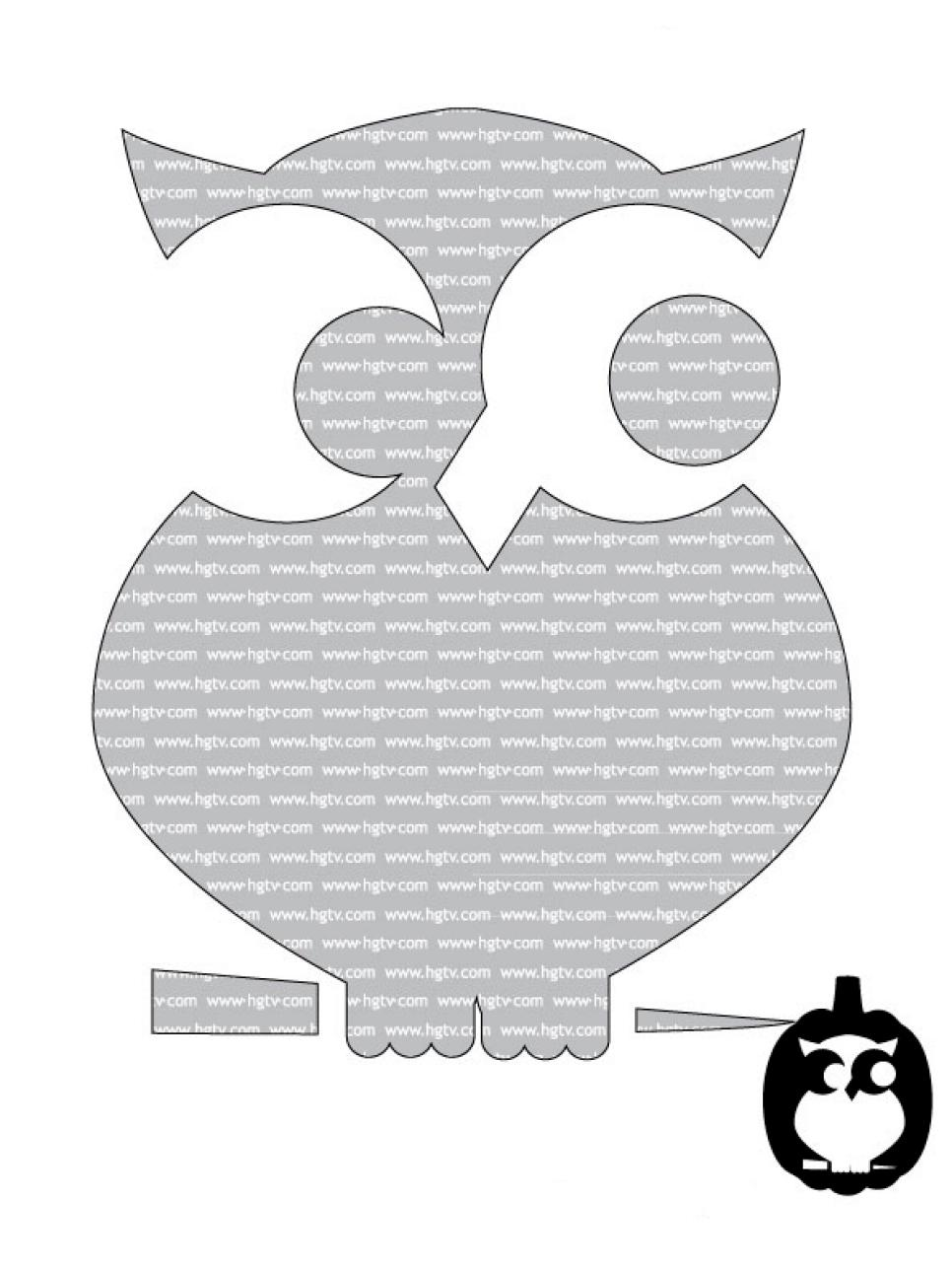 Easy and cute owl pumpkin carving templates ideas 2017$ | Happy ...