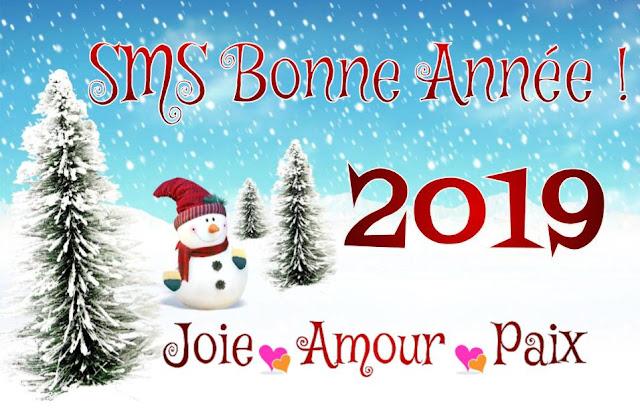 Bonne Année 2019 : Paix, joie, amour et santé pour tous ❤