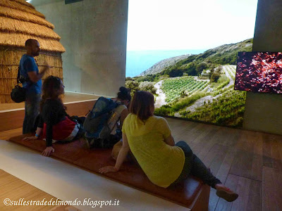 Galleria del Mediterraneo