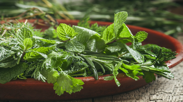4 Herbs That Are As Good As Over-The-Counter Pain Meds Fotolia