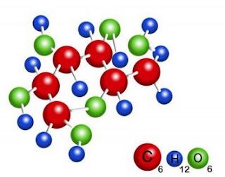 10 senyawa organik