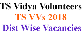✉ TS Vidya Volunteers (VVs) 2018 District Wise Mandal Wise Vacancies And Schedule ✉