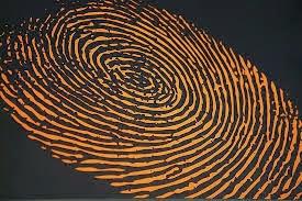 analisa sidik jari untuk menentukan kecerdasan, ilmu kecerdasan lewat sidik jari, apakah stifin, ilmu rumusan sidik jari stifin