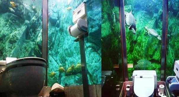 Kafe Unik Di Jepang Yang Keren Banget
