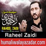 http://www.humaliwalayazadar.com/2017/10/raheel-zaidi-nohay-2018.html