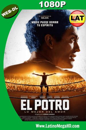 El Potro: Lo mejor del amor (2018) Latino HD WEB-DL 1080P ()
