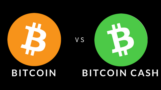 Bitcoin vs. Bitcoin Cash, which one is Satoshi's true vision [Infographic]