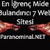 En İğrenç Mide Bulandırıcı 7 Web Sitesi (Kanlı, Vahşetli, Kesmeli, Biçmeli)