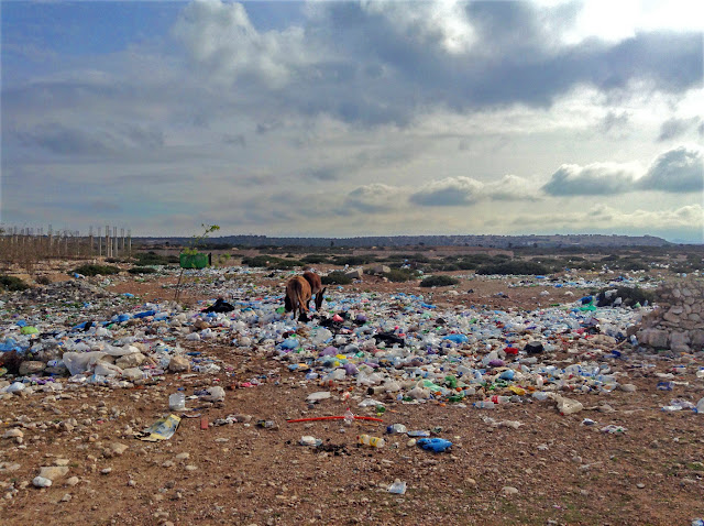 Plastic Bags in Morocco