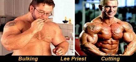 guadagno muscolare perdere grasso bodybuilding com