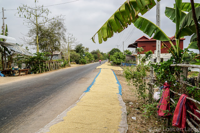Route Cambodgienne