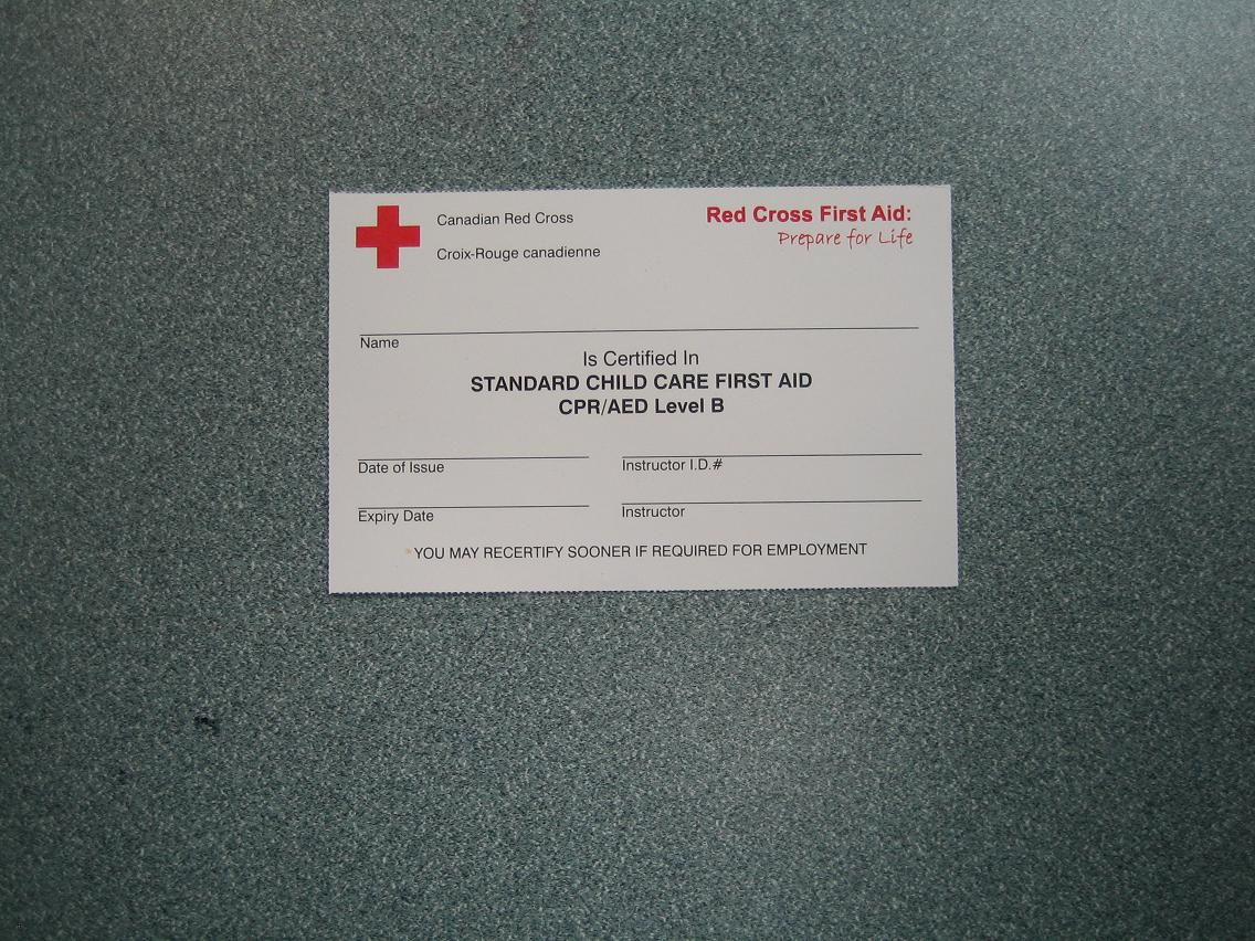 Free Professional Resume Red Cross Certification Classes