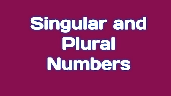 Singular and plural number's in Hindi