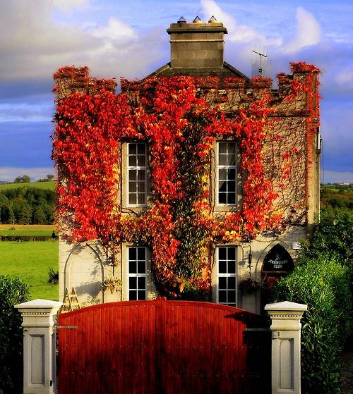 Autumn Lakes Apartments: Mrs Black's This N That: SEASONAL