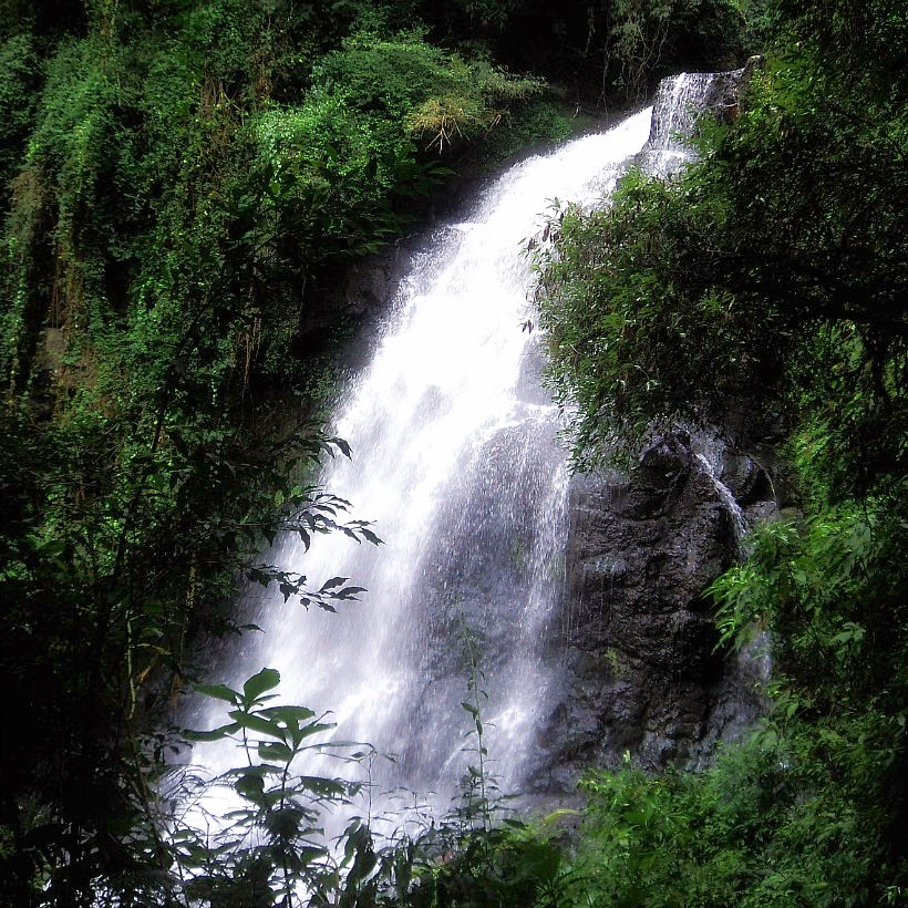 Cascata dos Narcisos, Gramado