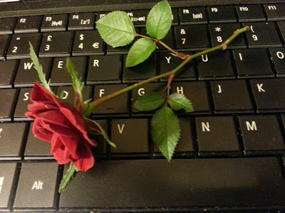 Rose on computer keyboard