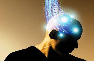 Conexión cerebro-órganos y consciencia.