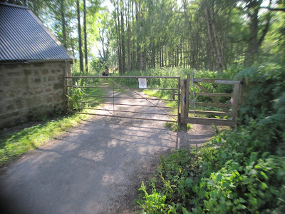 Walk through the gate to continue around Loch Kinord