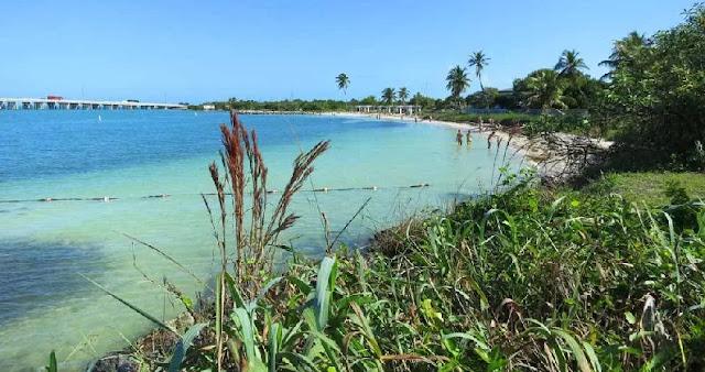 Bahia Honda State Park nas ilhas Keys em Miami