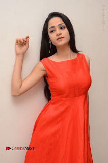 Telugu Actress Divya Nandini Stills in Orange Sleeveless Gown at Chennai Chaitrama Movie le Launch Event  0076.JPG
