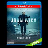 John Wick: Otro día para matar (2014) Full HD 1080p Audio Dual Latino-Ingles