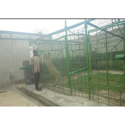 Origin Garden and Zoo in Ikorodu, Lagos State – Nigeria First's Privately Run Zoo