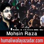 http://www.humaliwalayazadar.com/2016/11/mohsin-raza-nohay-2017.html